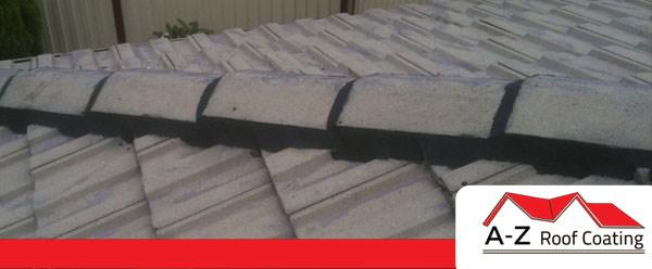 roof-restoration-port-stephens-ridge-pointing